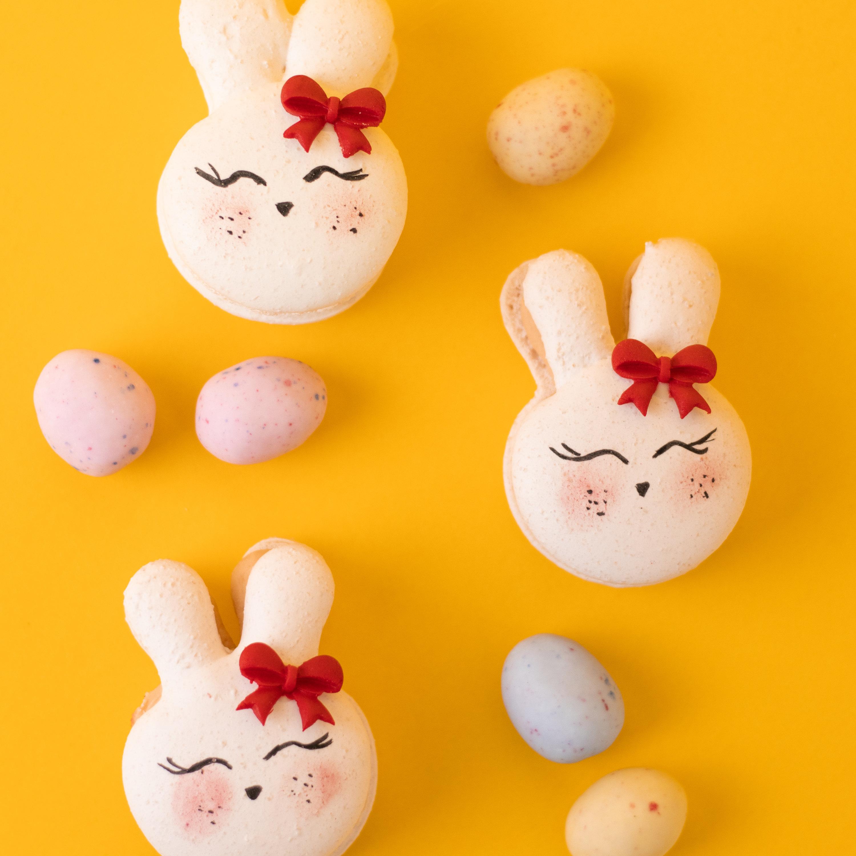 Macaron Hasi